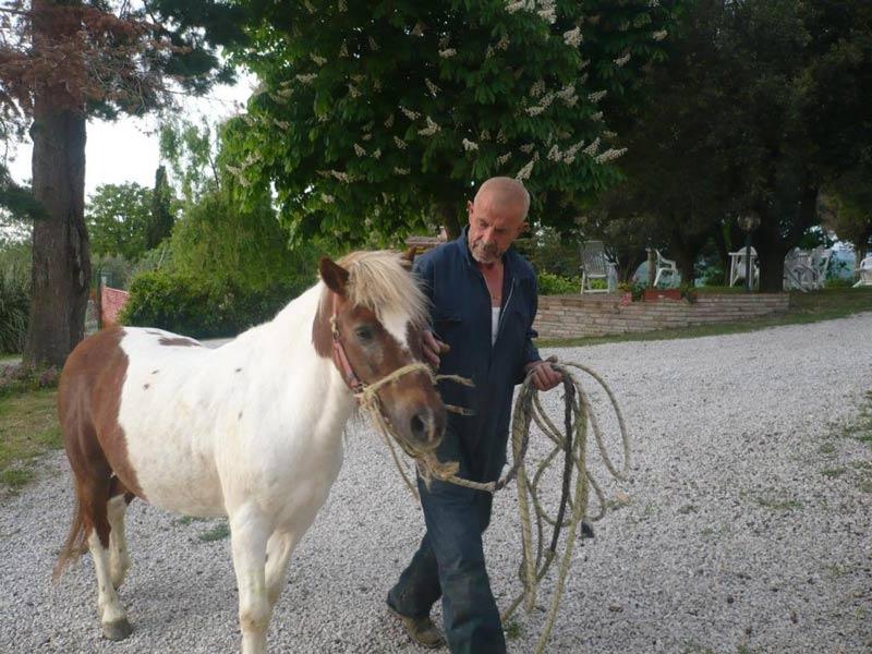 Тоскана сельский туризм