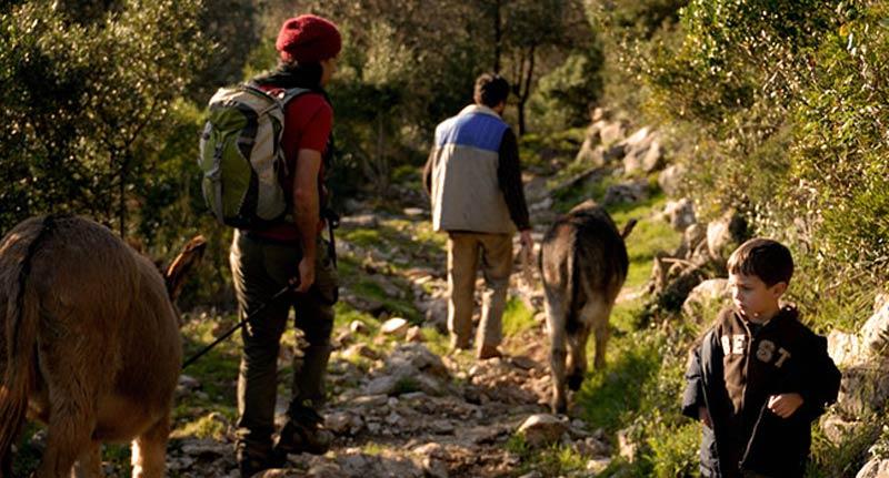 Агротуризм Тоскана прогулки с ослом