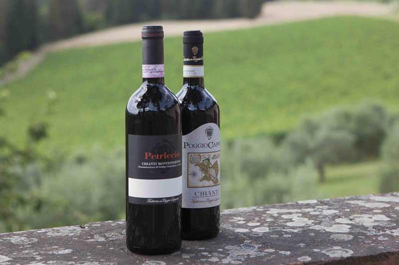 Винодельческие хозяйства Тосканы: отдых у виноградной лозы