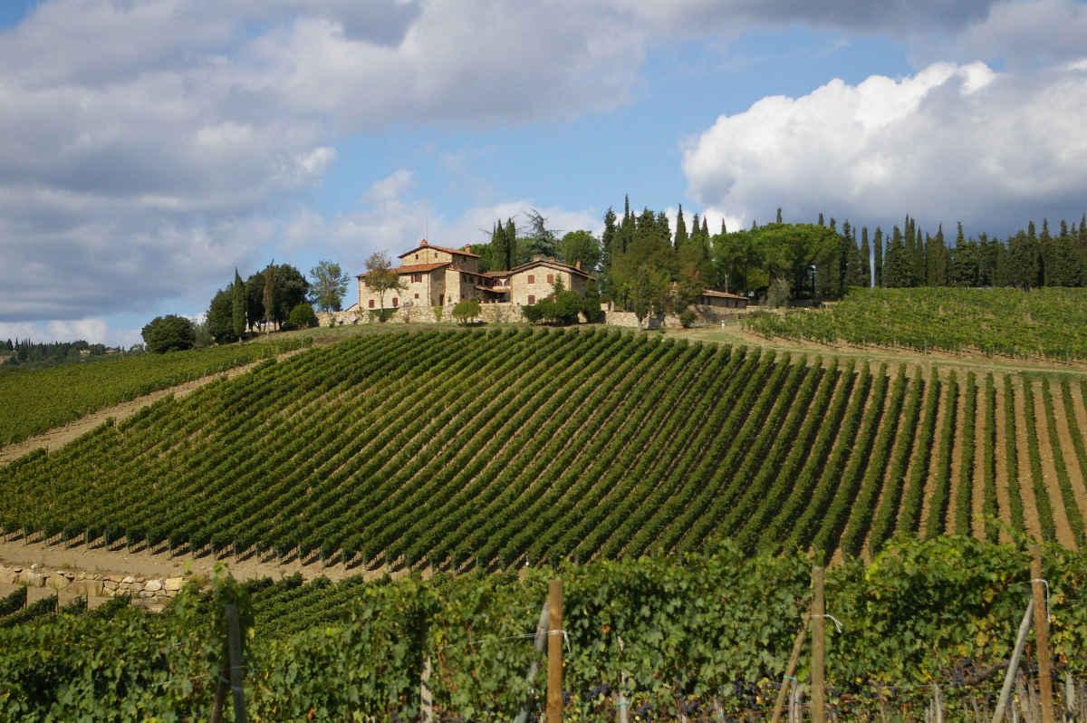 кьянти италия, тоскана кьянти вино